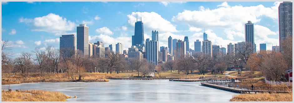 November in Chicago: Don't Miss These 5 Things